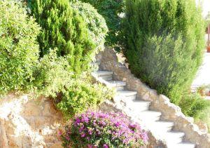 Steps leading to swimming pool at Bella Vista